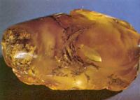 Kaliningrad presents an emblem to the Amber Chamber