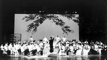 The National Traditional Orchestra of China