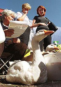 Russian Farmer 2001