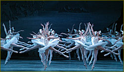Mariinsky,s ballet option